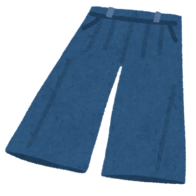 fashion_gaucho pants.png