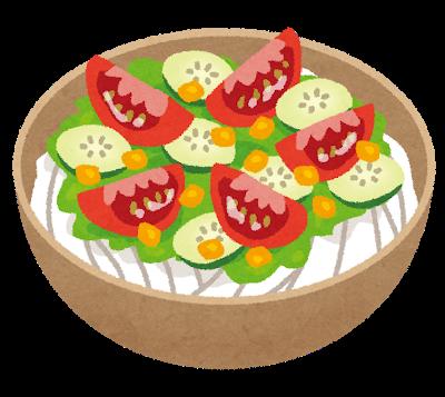 food_salad_udon.png