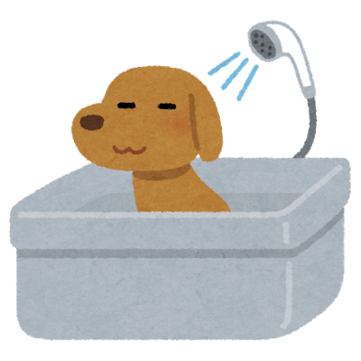 pet_dog_bath.png
